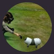 virtual reality usability testing